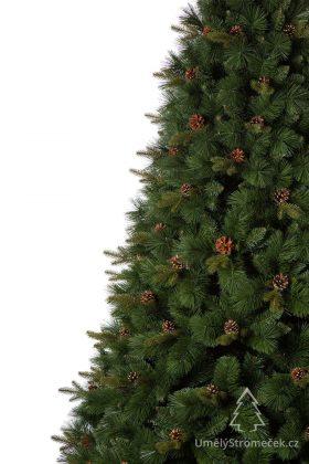 borovice-himalajska-3d-detail